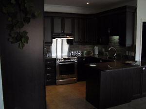 Armoire de cuisine en polyester et comptoir de granite