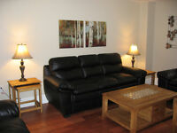 2 month sublet avail July 1st - Fully furnished..  $1,800 inc.