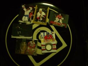 team pinnacle/jersey subban/parkhurst17/lidstrom spx/nhl