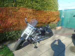 moto sport harley davidson