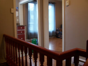 A cosy one bedroom in the downtown LeMarchant Road/Campbell Ave.
