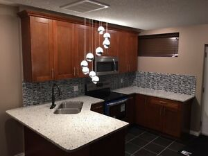 Executive  4 bedroom Suite - U of A and Downtown