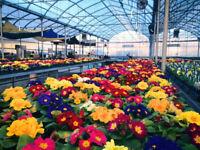 Garden Centre Employees