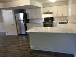 ***STUNNING NIAGARA FALLS LARGE 3 BEDROOM 1 BATH APARTMENT***