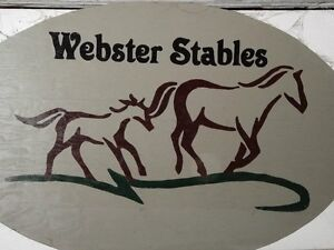 Horse Stalls For Rent in a Private and Quiet Barn!
