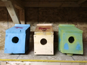 LUWS Painted Bird Boxes