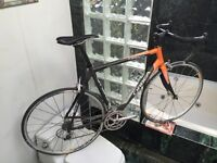 BRAND NEW SIZE 56cm (OLDER MODEL) ORBEA AQUA ROAD BIKE - CAMPY