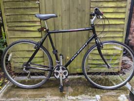 Raleigh Pioneer SIS - Hybrid bike