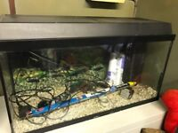 96 litre Juwel fish tank