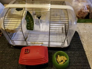 Hamster White + cage