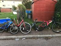 Job lot of bikes