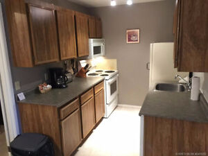 Great Ski Hill 4 bed 2 bath for lease April 1st