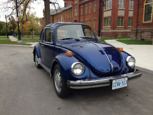 "1974 ""Super"" Beetle (safety and insured daily driver)"