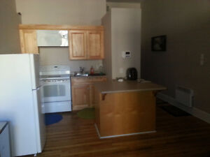 Downtown Apartment Half furnished