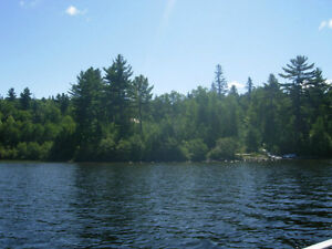 Cottage for Sale on Hangstone Lake, Ontario NEW PRICE $149 000