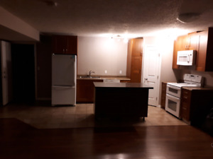 2 Bedrooms Basement Suite in Morinville