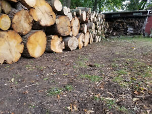 !!!! FIREWOOD !!!! sale in Whitby ON