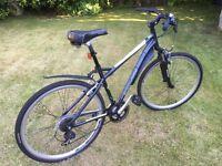 Schwinn Hybrid Trekking Bike