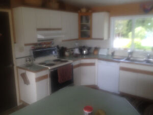 kitchen cabinets to fit in approximately 10 x 10 floor area