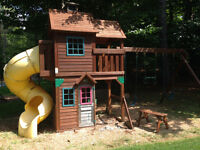 Cedar Summit Play Set from Costco