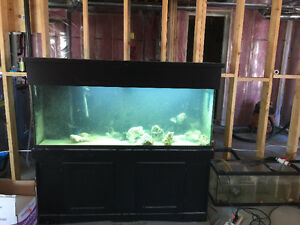 Saltwater aquarium.  125 gallon with stand and canopy London Ontario image 1