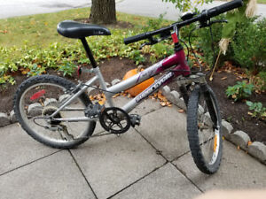 Supercycle Impulse Youth Bike, 20-in