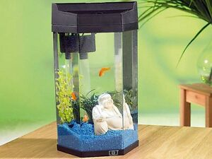 Säulen Aquarium 7l Nano Kleinfische Jungfische Krebse Flöhe Garnelen KOMPLETT