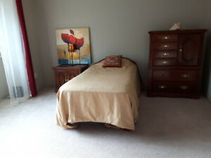 Huge Furnished Master Bedroom with Big Walk-in closet
