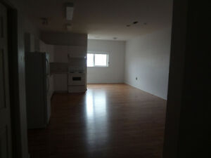 2 bedroom downtown Williams Lake
