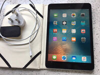 iPad mini -16 gb - great condition