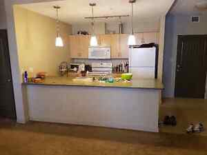 Furnished one bedroom for rent in Peaks