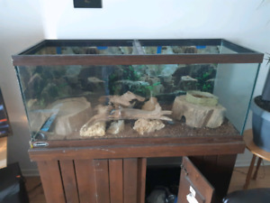 75G ACQUARIUM WITH 1000lbs PINE STAND !!