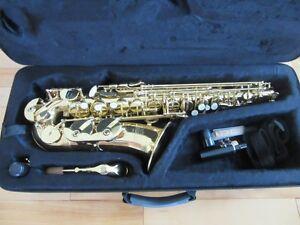 Roy Benson BAS-101 Alto Saxophone