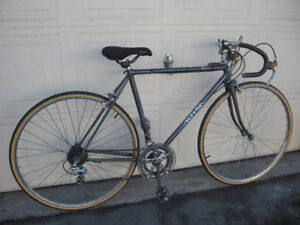 Altima 10 Speed Racing Bicycle