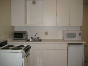 FURNISHED ONE BEDROOM APT FOR RENT - WALKING DISTANCE TO CAMPUS