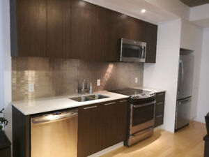 Sublet modern Condo RIGHT next to Metro station,park,lil Italy