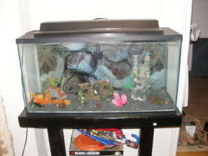 30 Gallon Fish Tank with Stand Lighting Filter Pump and More