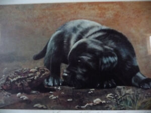 "Hand Signed, Titled by Listed Artist Tammy Laye ""Pup And Toad"" Stratford Kitchener Area image 4"