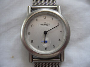stainless steel Skagen watch