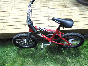 Kids Beginner Bike (2 Wheels)