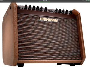 Fishman loudbox mini Charge with deluxe bag