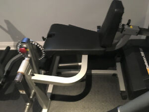 Weights, exercise equipment, leg press, plates, hack squat, rack