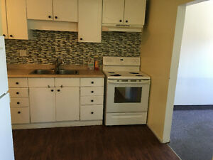 2 bedroom apartment in Ferris