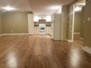 Basement Suite in Armstrong