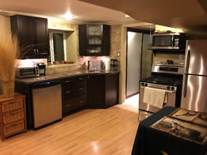 GORGEOUS FURNISHED ONE BEDROOM APARTMENT