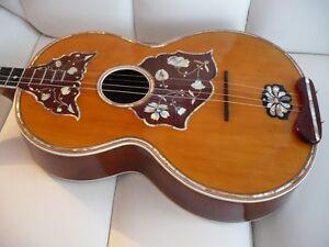 tamburitza, croatian mandolin