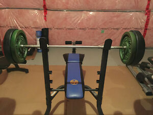 260 lbs of weights, bench press bar and bench, curling bar