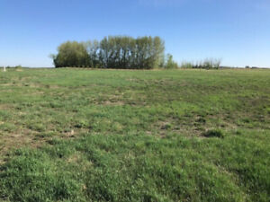 **LAND FOR SALE** 97 RIDER PLACE RM OF DUNDURN
