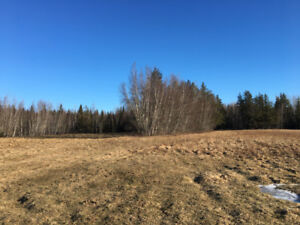 170 acres of land for sale near Petitcodiac *price reduced!!*