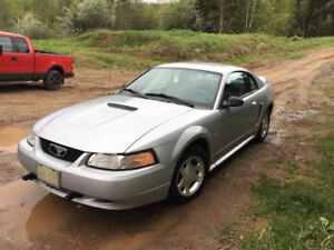 2000 Ford Mustang - Great Condition